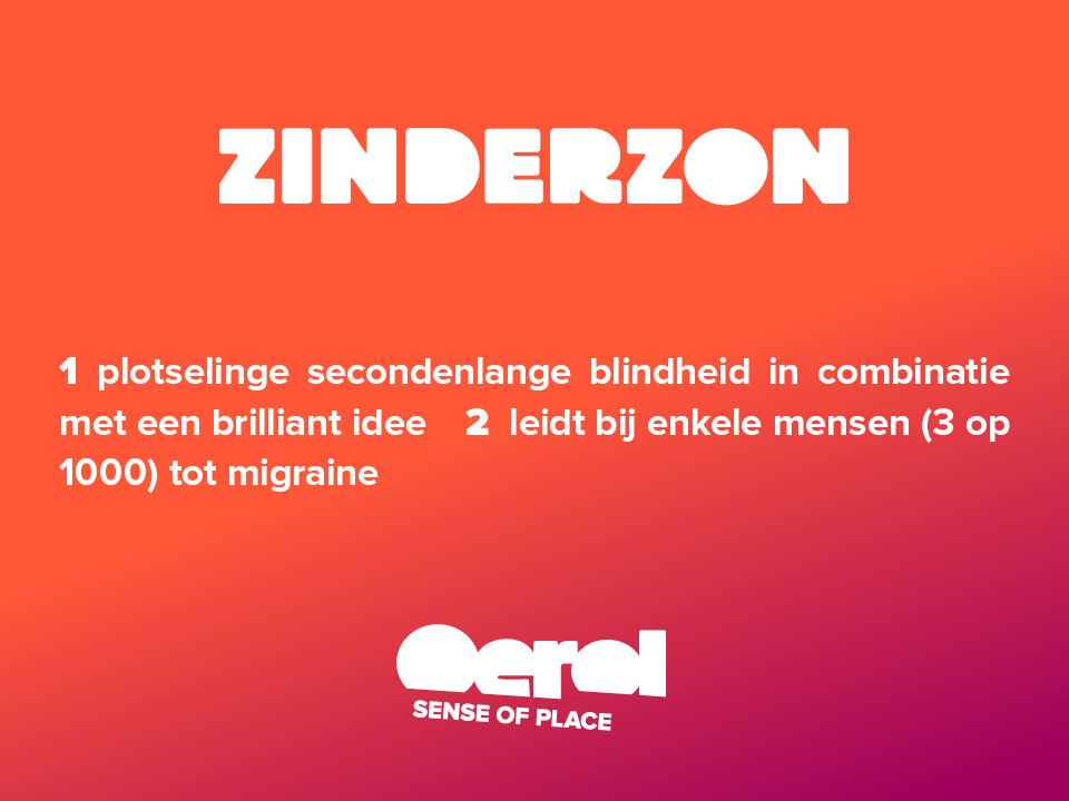 oerol-2014-woordenboek-zinderzon.jpg